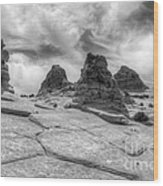 South Coyote Buttes Monochrome 1 Wood Print