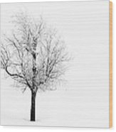 South Dakota Winter Wood Print