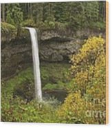 South Falls In Autumn Wood Print