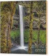 South Falls Silver Falls State Park Wood Print