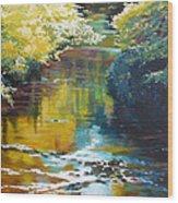 South Fork Silver Creek No. 3 Wood Print