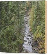south fork Snoqualmie river Wood Print