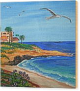 South La Jolla Wood Print