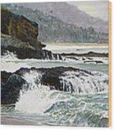 South Laguna Wood Print