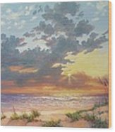 South Padre Island Splendor Wood Print