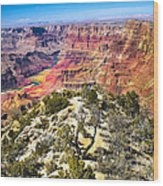 South Rim From The Butte Wood Print by Robert Bales