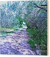 South Texas Brushlands Wood Print
