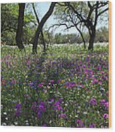 South Texas Meadow Wood Print
