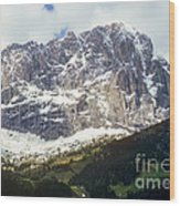 South Tyrol Wood Print