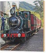South West Wilderness Railway Wood Print