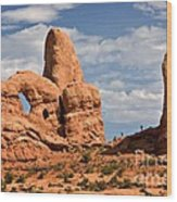 South Window Arches National Park Wood Print