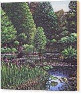 Southampton Hillier Gardens Wood Print