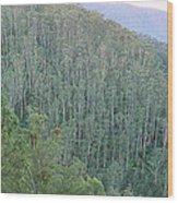 Southeast Forest Ridges Wood Print
