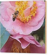 Southern Bee Wood Print