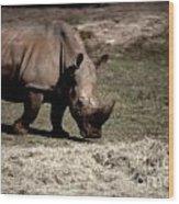 Southern Black Rhino Wood Print