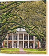 Southern Class Wood Print
