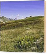 Southern France The Alps Wood Print