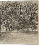 Southern Journey Sepia Wood Print
