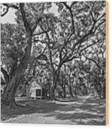 Southern Lane Monochrome Wood Print