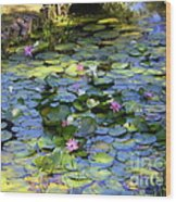 Southern Lily Pond Wood Print