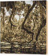 Southern Living Wood Print