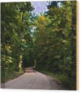Southern Missouri Country Road I Wood Print