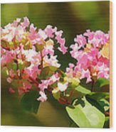 Southern Myrtle Wood Print