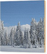 Southern Oregon Forest In Winter Wood Print