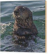 Southern Sea Otter 2 Wood Print
