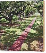 Southern Shadows Wood Print