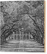 Southern Time Travel Bw Wood Print by Steve Harrington