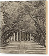 Southern Time Travel Sepia Wood Print