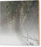 Southern Trees Have Curves Wood Print