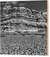 Southern Utah 003 Wood Print by Lance Vaughn
