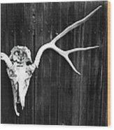 Southwest Americana Wood Print
