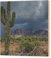Southwest Monsoon Skies  Wood Print