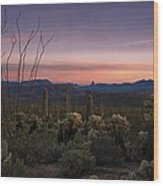 Southwest Serenity  Wood Print