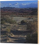 Southwest Snake Canyon Wood Print by Maria Arango Diener