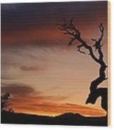 Southwest Tree Sunset Wood Print by Michael J Bauer