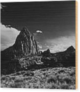 Southwestern Beauty In Black And White Wood Print