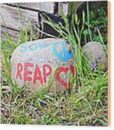 Sow Peace Reap Love Wood Print