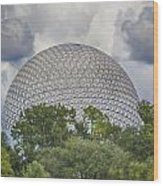 Spaceship Earth Wood Print