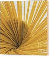 Spaghetti Spiral Wood Print