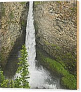 Spahats Falls Waterfall In Wells Gray Provincial Park Wood Print