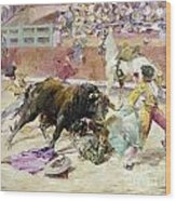 Spain - Bullfight C1900 Wood Print