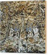 Spain. Barcelona. Expiatory Church Wood Print