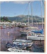 Boats In Spain Series 26 Wood Print