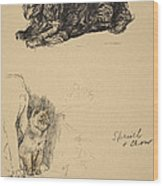 Spaniel And Chow, 1930, Illustrations Wood Print