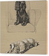 Spaniel And Sealyham, 1930 Wood Print