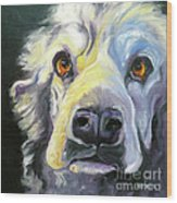 Spaniel In Thought Wood Print